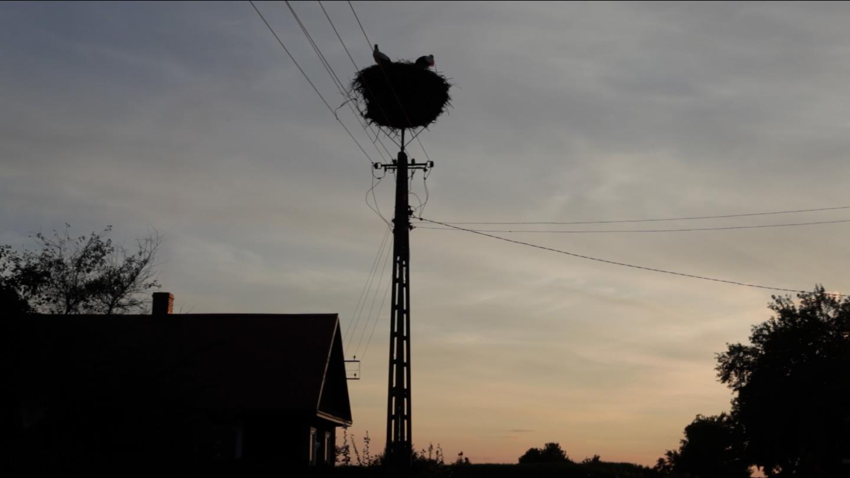 LE FILM «OEIL DE BICHE» en cours de montage